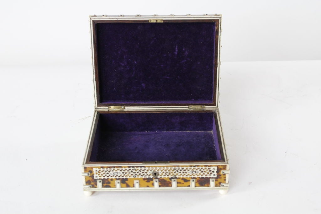 Tortoise Shell And Ivory Large For Anglo Indian Boxes
