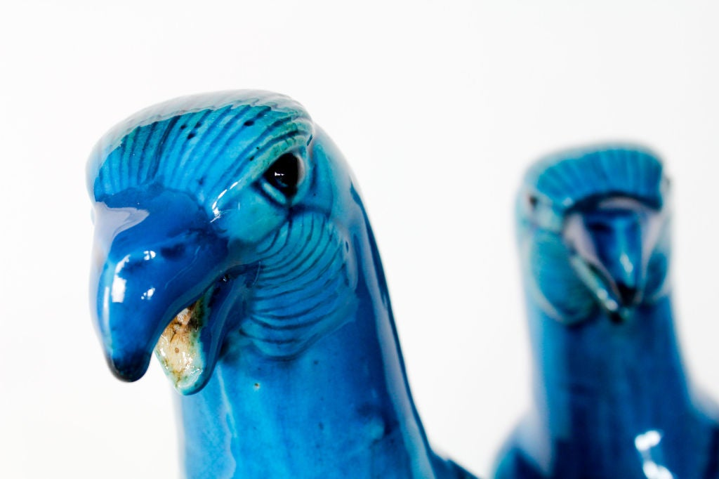 Pair of Large Chinese Export Turquoise Glazed Parrots For Sale 4