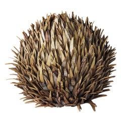 An Amazing Sea Urchin Lamp