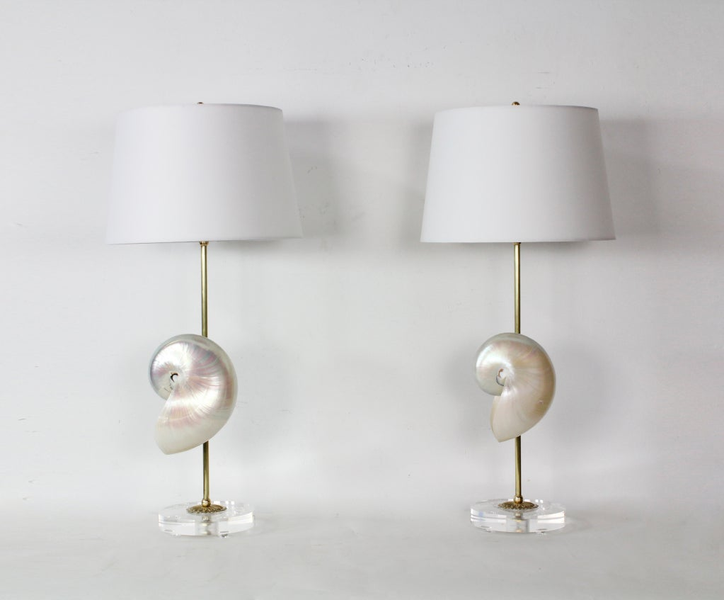 nautilus shell lamps on lucite bases at 1stdibs. Black Bedroom Furniture Sets. Home Design Ideas