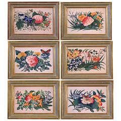 A Set of Six China Trade Botanical Watercolours on Pith Paper