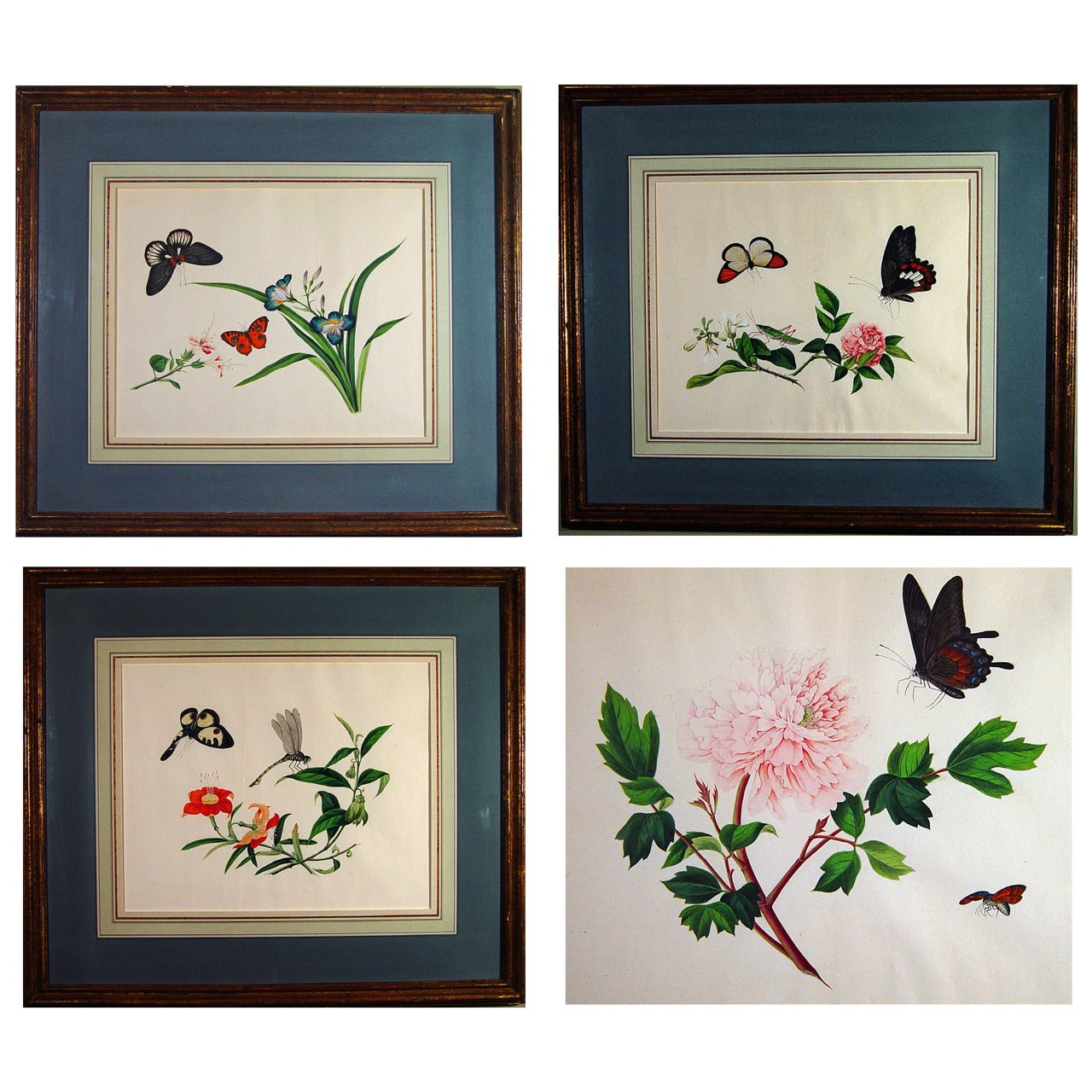 Chinese Botanical Large Watercolors on Paper, circa 1800 'Four'