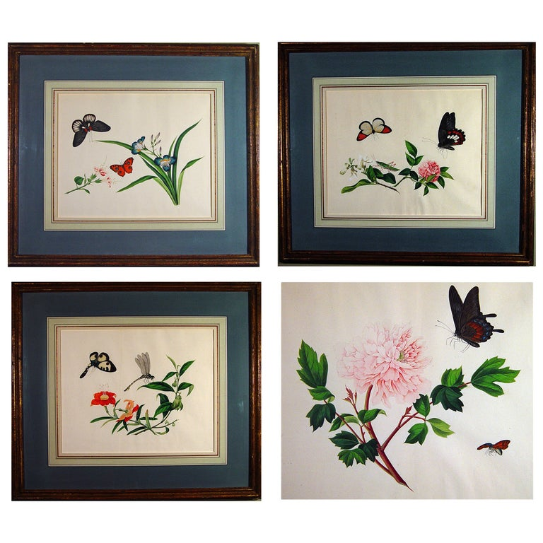 Chinese Botanical Large Watercolors on Paper, circa 1800 'Four' For Sale