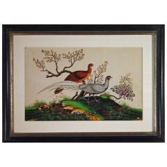 A Fine Set of Four China Trade Watercolours of Birds