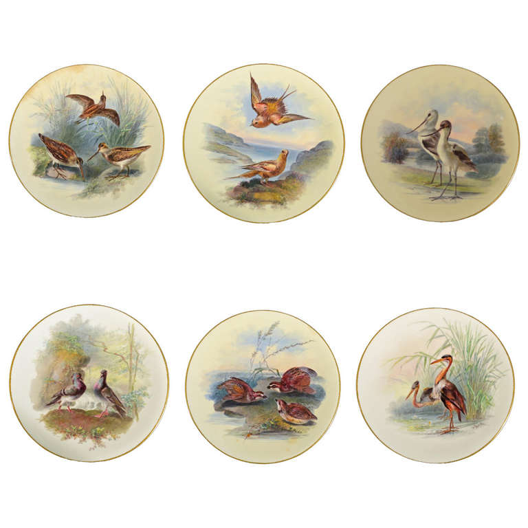 Thomas Minton Porcelain Bird Cabinet Plates, Signed by William Mussil.