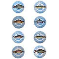 A Set of Eight Vintage Piero Fornasetti Trompe L'oeil Piscibus Plates
