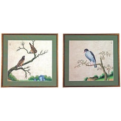 Chinese Export Watercolour Exotic Bird Paintings on Paper.