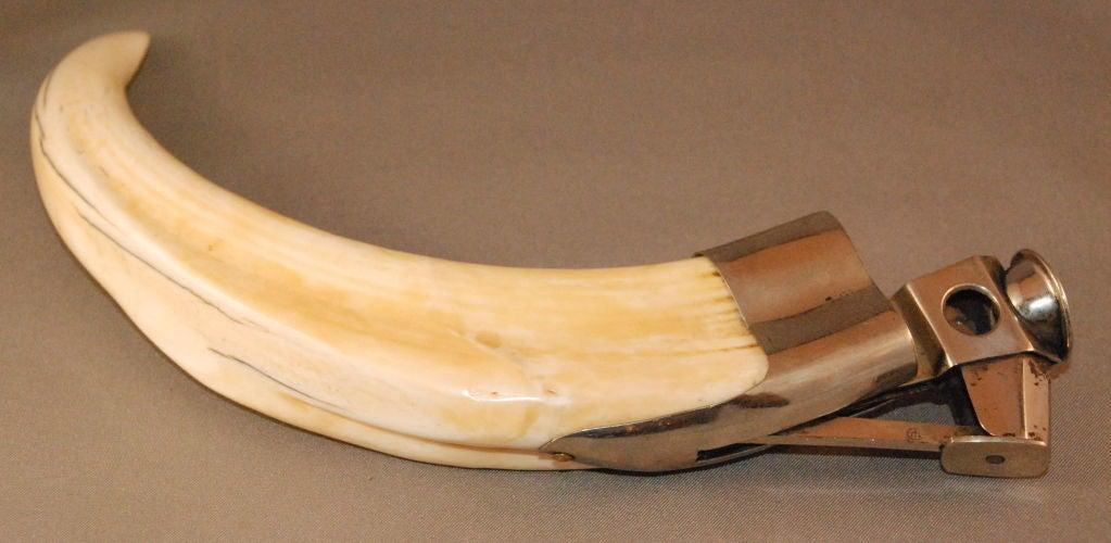 Antique Cigar Cutter 6