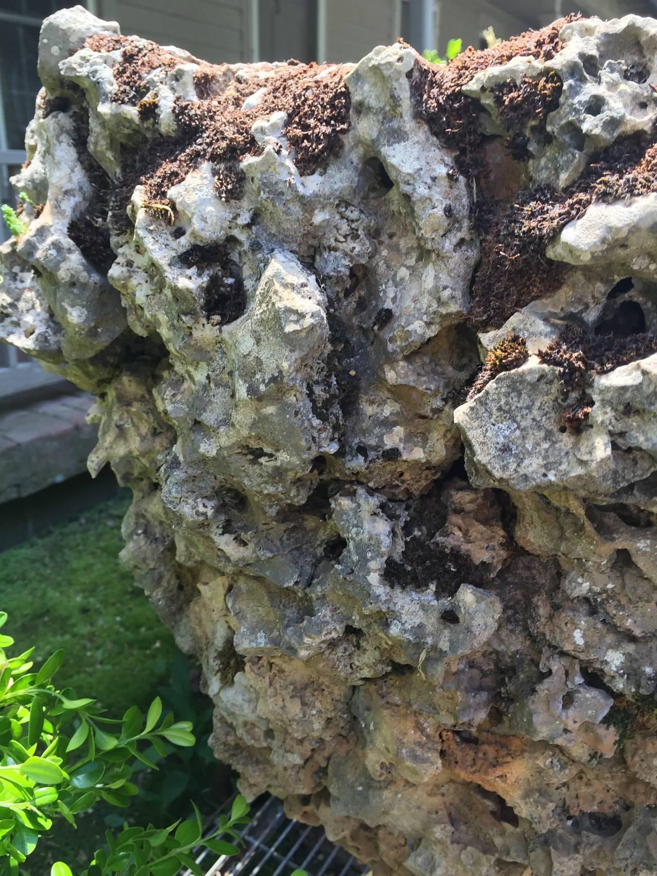 Rock Planters Sale Volcanic Rock Planter