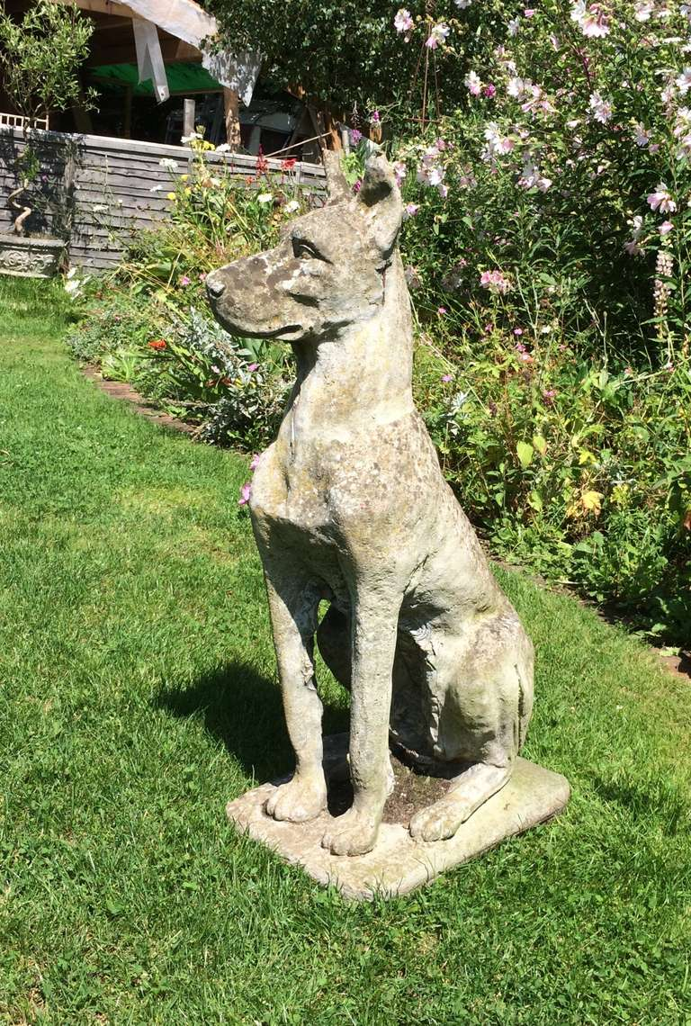 Large Weathered Cast Stone Great Dane Figure At 1stdibs