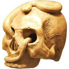 Ceramic Meiji Okimono Skull Japanese