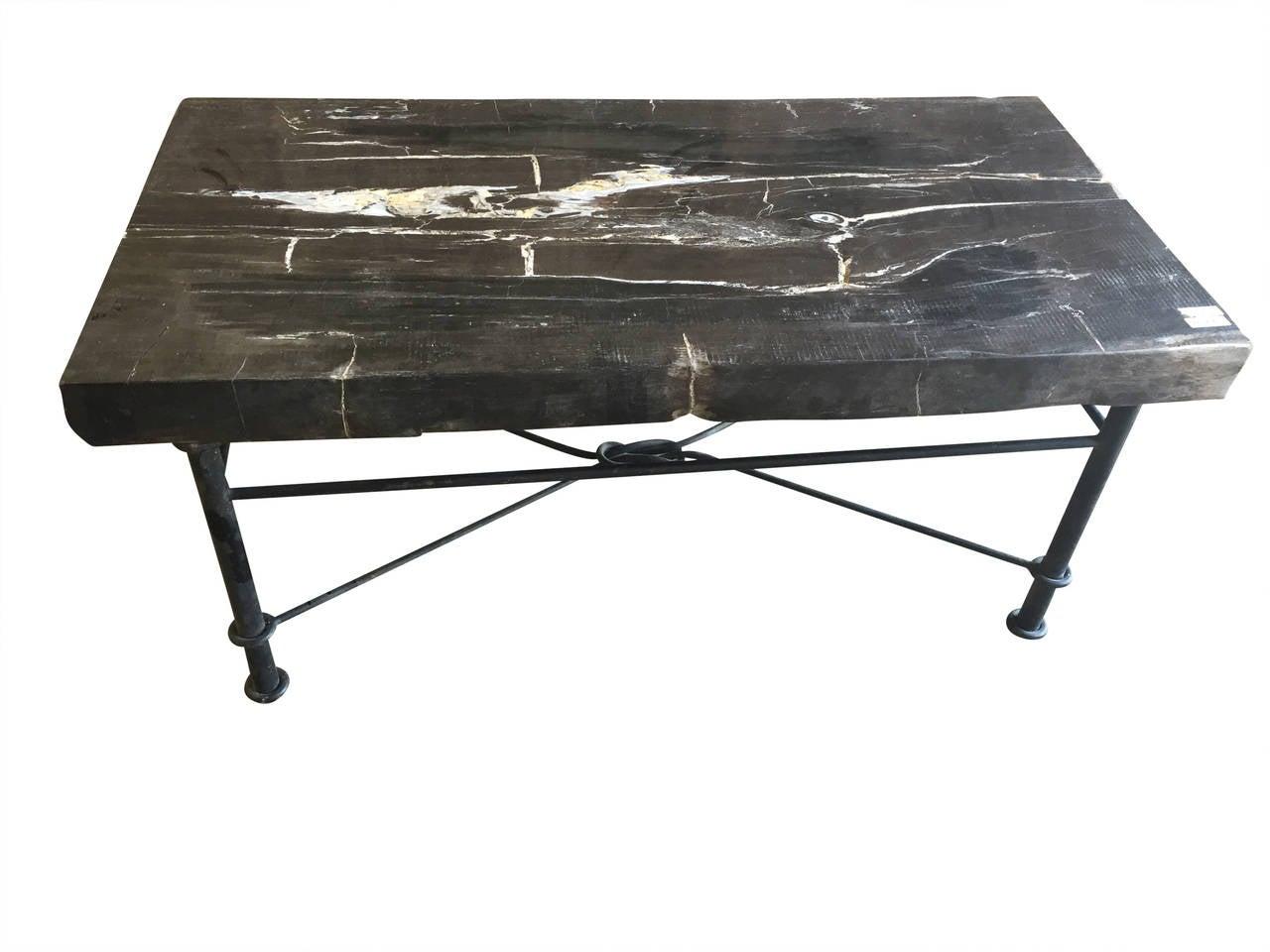 Petrified Wood Slab Coffee Table with Iron Base at 1stdibs