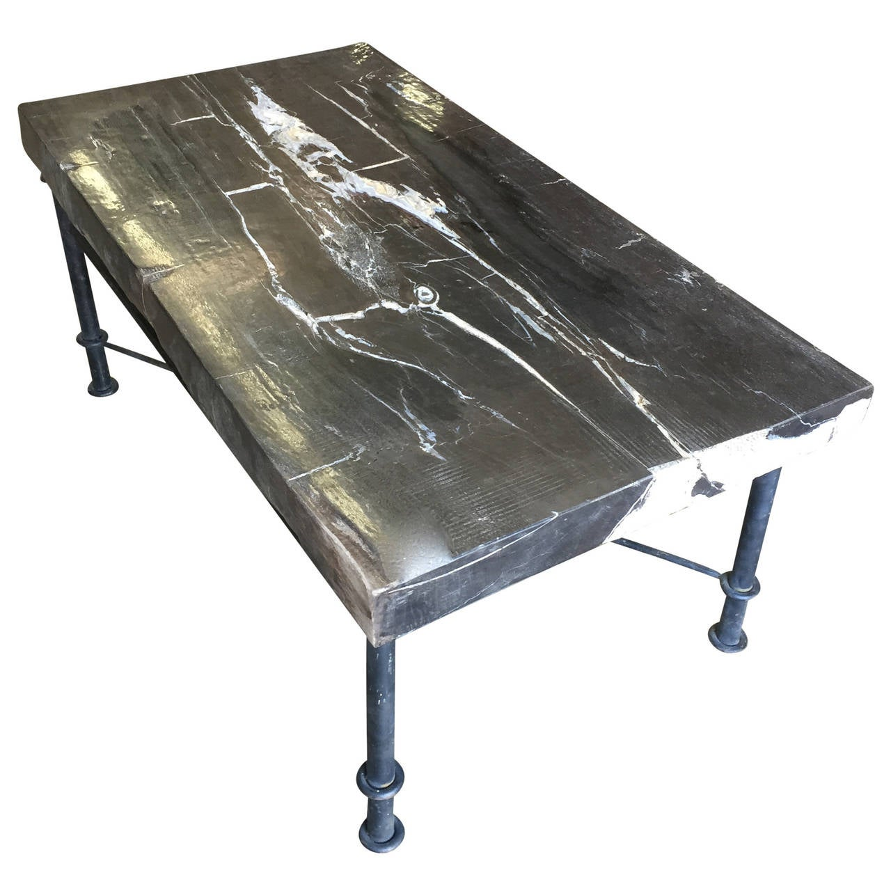 Petrified wood slab coffee table with iron base at 1stdibs for Wood slab coffee table