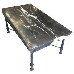 Petrified Wood Slab Coffee Table with Iron Base