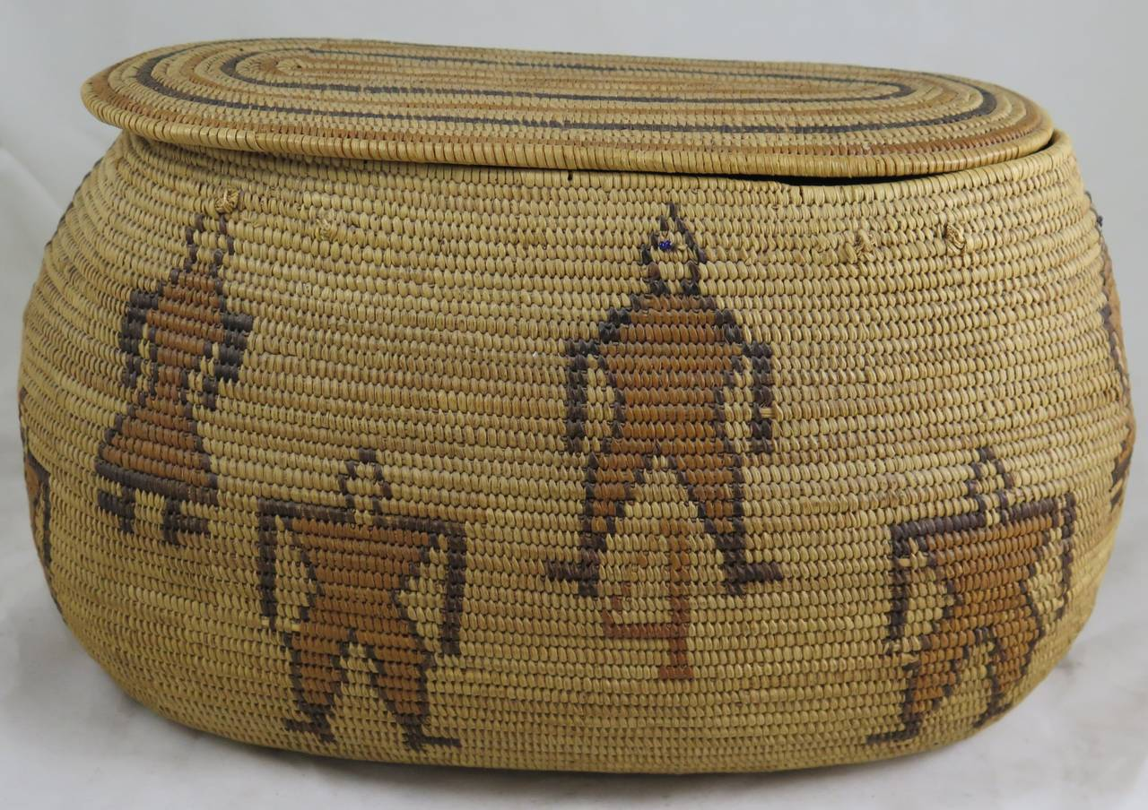 Rare 29 Palms Chemehuevi Native American Basket, Early 20th Century 3