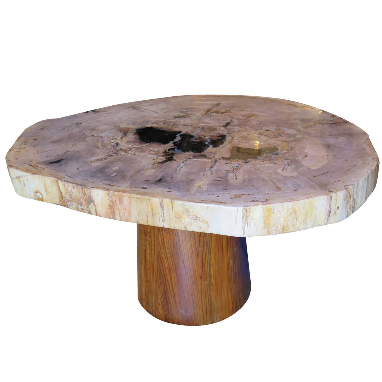 Petrified Wood Coffee Or Cocktail Table With Mid Century Base At 1stdibs