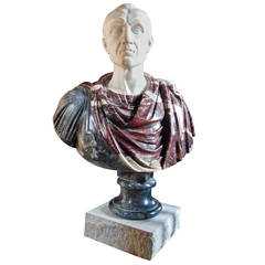 19th Century Specimen Marble Bust of Roman, Possibly Brutus