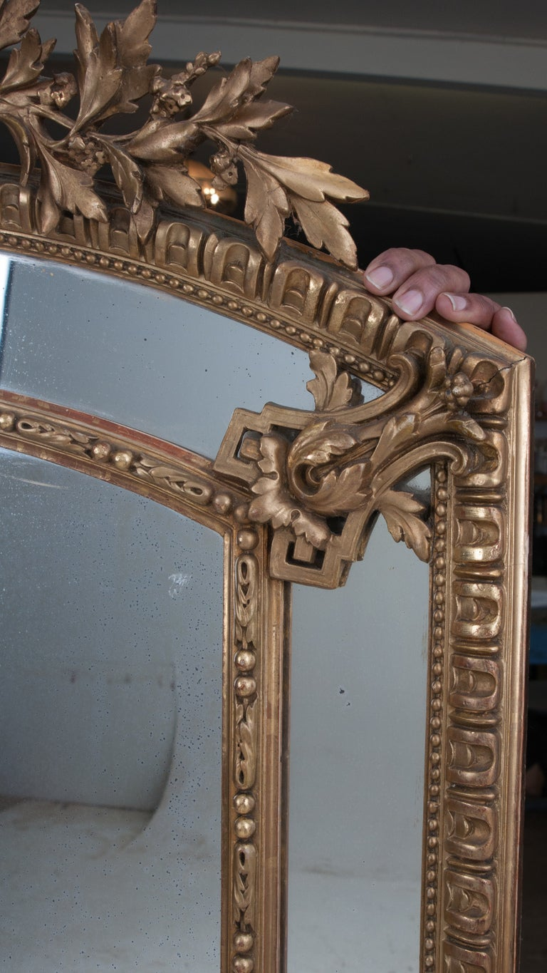 French Louis XVI Style Gold Gilt Pareclose Mirror For Sale 1