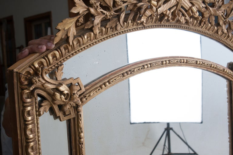 French Louis XVI Style Gold Gilt Pareclose Mirror For Sale 2