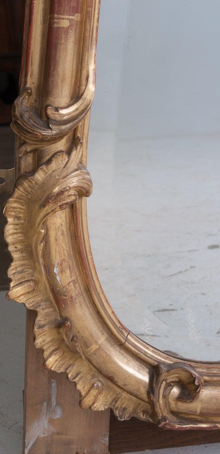 Louis XV Style Rocco Gilt Wood Mirror 9