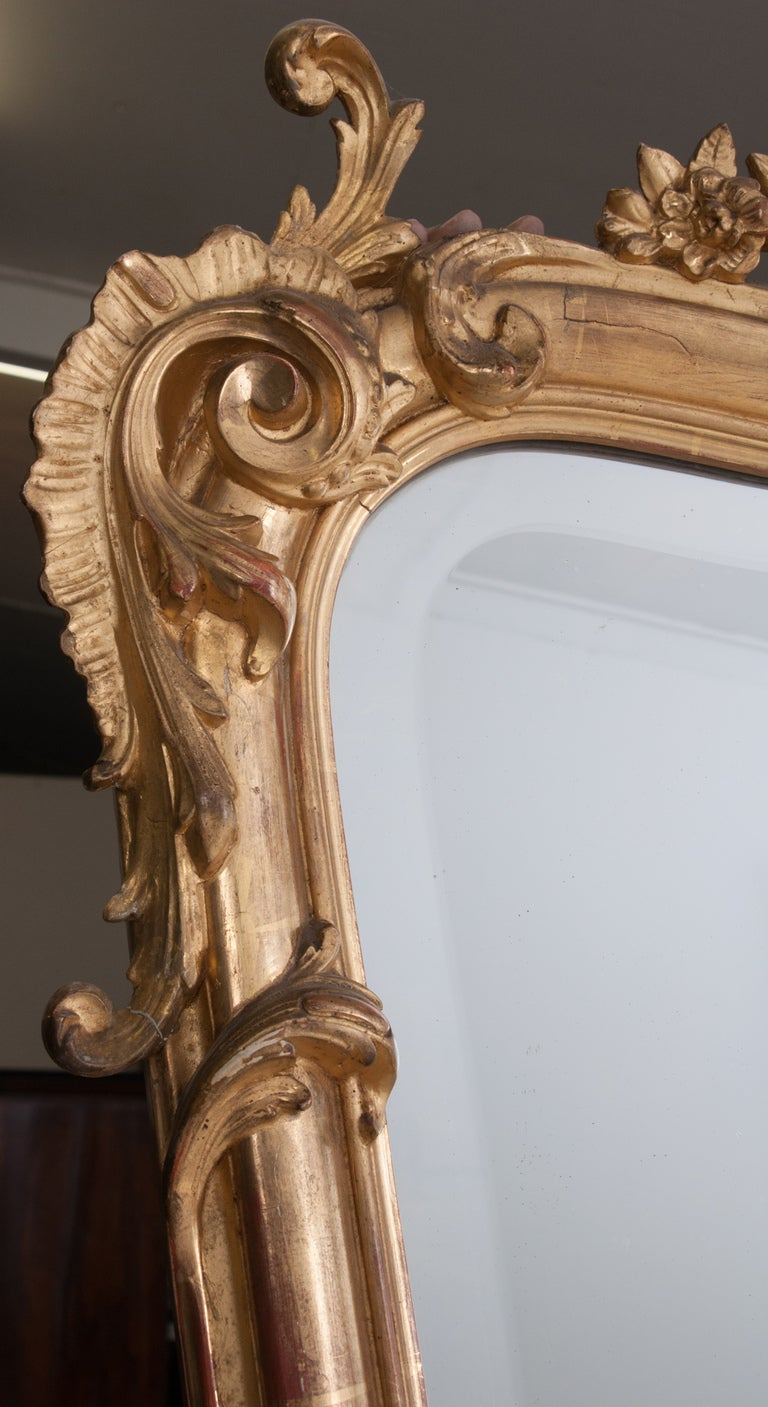 19th Century Louis XV Style Rocco Gilt Wood Mirror For Sale