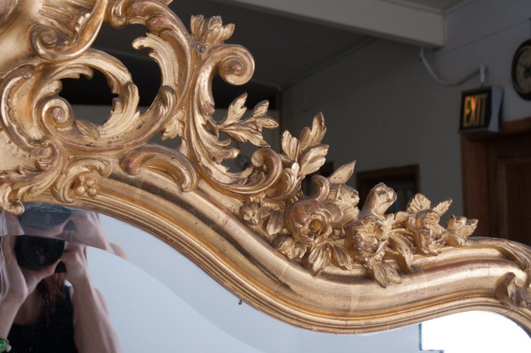 Louis XV Style Rocco Gilt Wood Mirror In Excellent Condition For Sale In Baton Rouge, LA