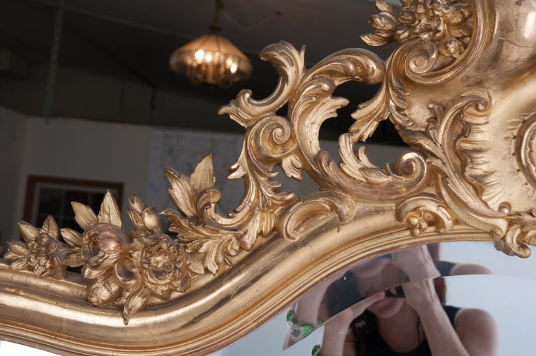 French Louis XV Style Rocco Gilt Wood Mirror For Sale