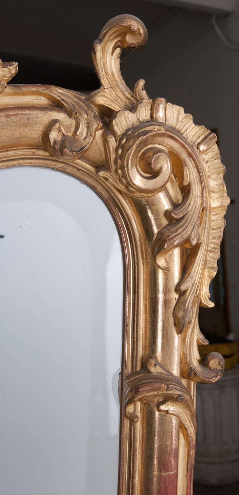 Louis XV Style Rocco Gilt Wood Mirror For Sale 1
