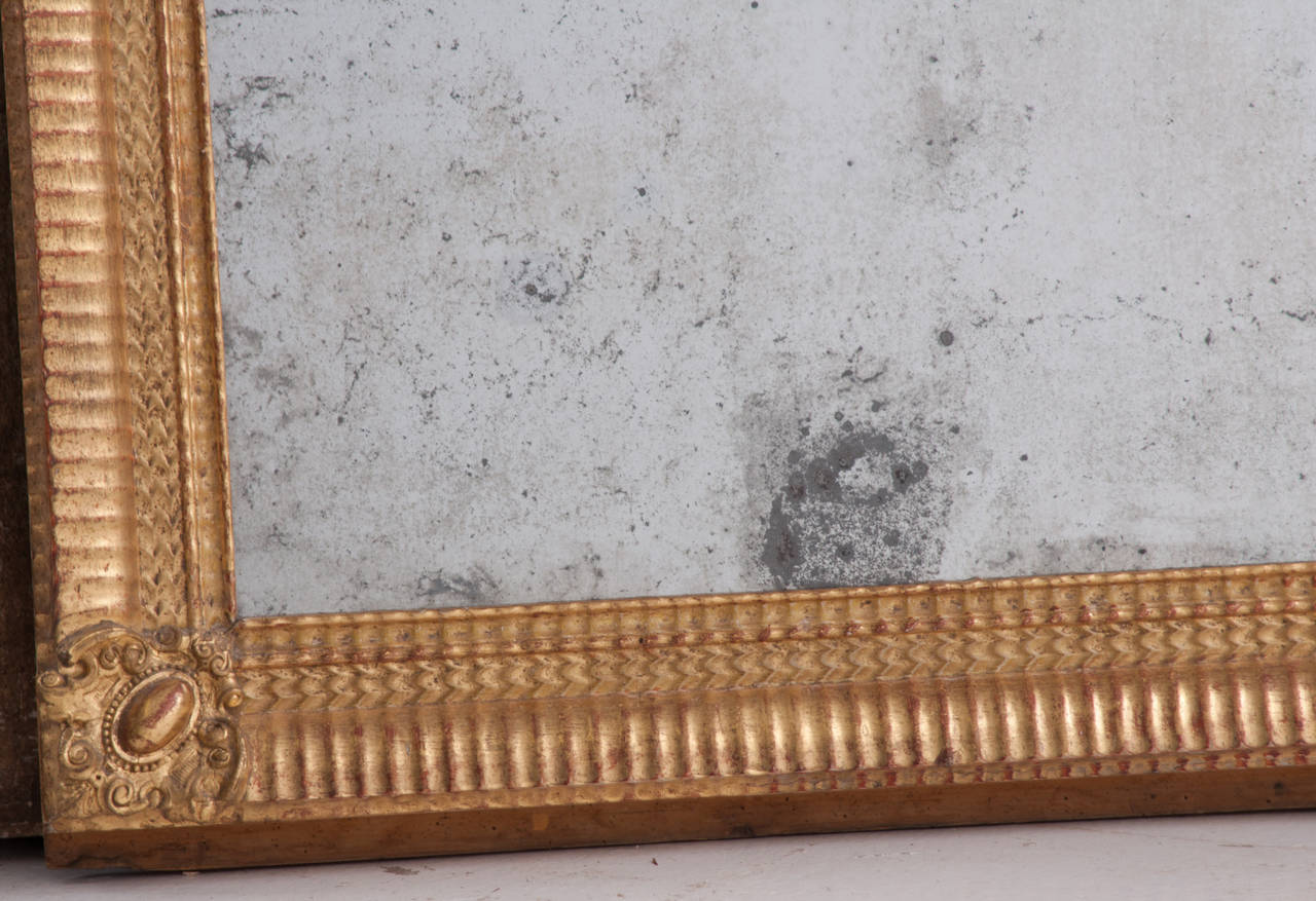 French 19th Century Louis Philippe Gold Gilt Mirror 4