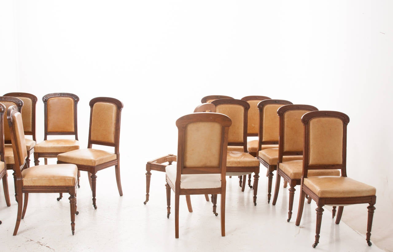 Set of 16 french 19th century walnut dining chairs at 1stdibs for Dining room tables seat 16