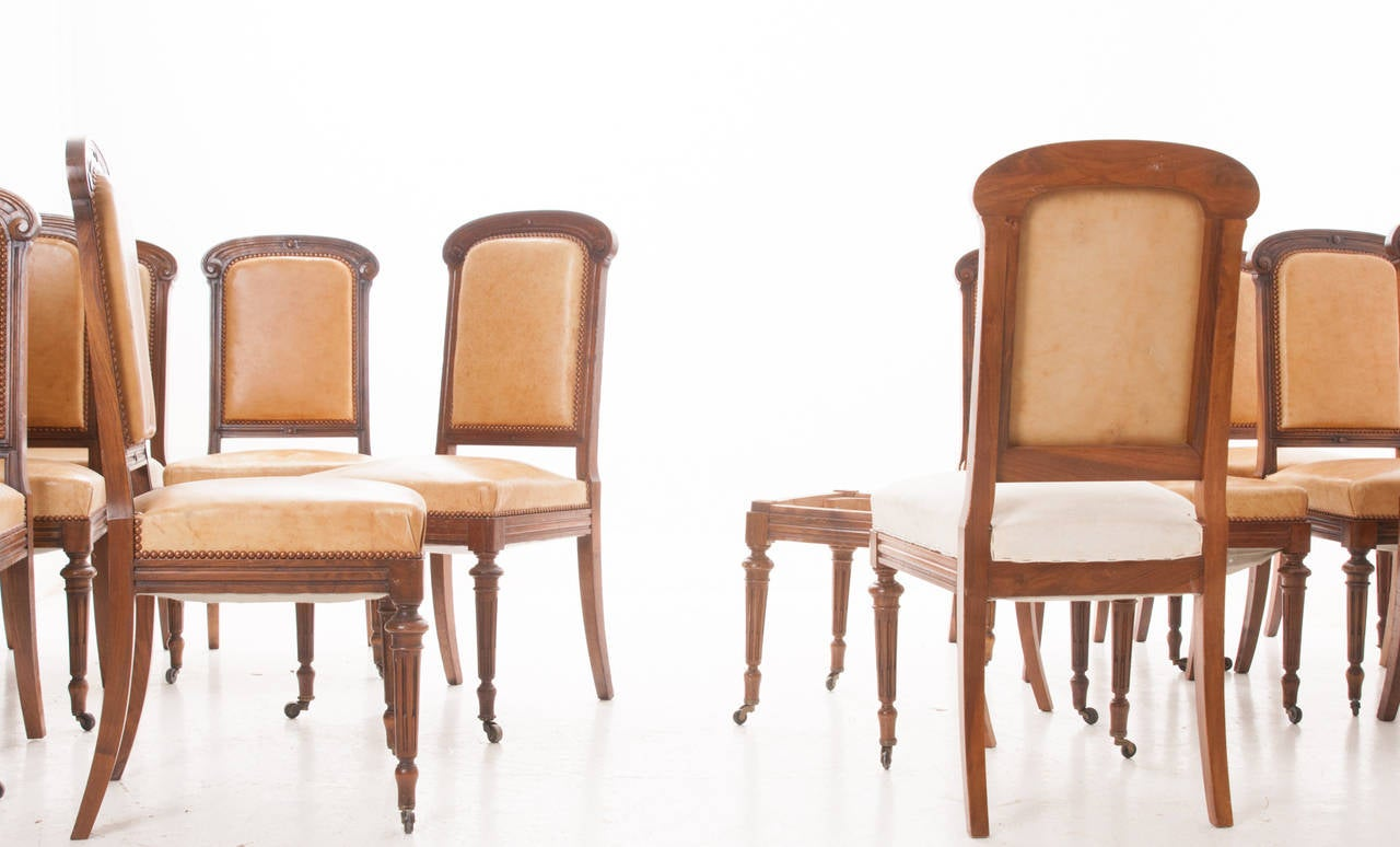 Set Of 16 French 19th Century Walnut Dining Chairs At 1stdibs