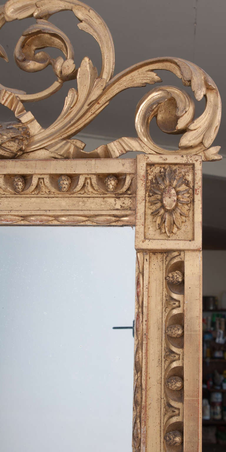 18th Century and Earlier French 18th Century Carved Gold Gilt Cameo Mirror For Sale