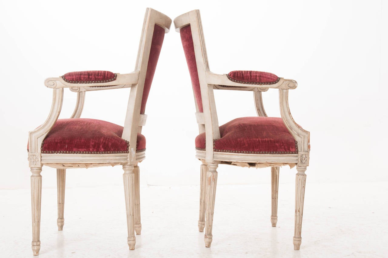 Pair of French 20th Century Louis XVI Style Armchairs For Sale 1