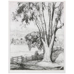 """""""The Old Elm,"""" 1934 Etching by Luigi Lucioni"""