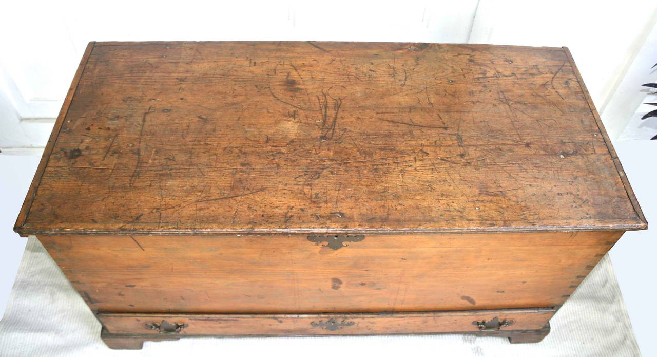 American Colonial American Dovetailed Pine Blanket Chest with Drawer For Sale