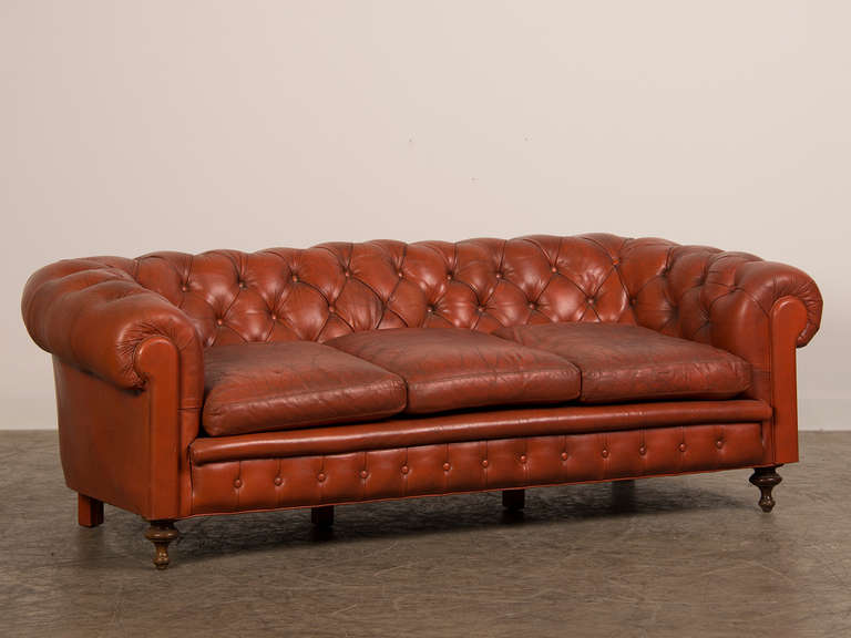 edwardian period vintage english chesterfield leather sofa. Black Bedroom Furniture Sets. Home Design Ideas