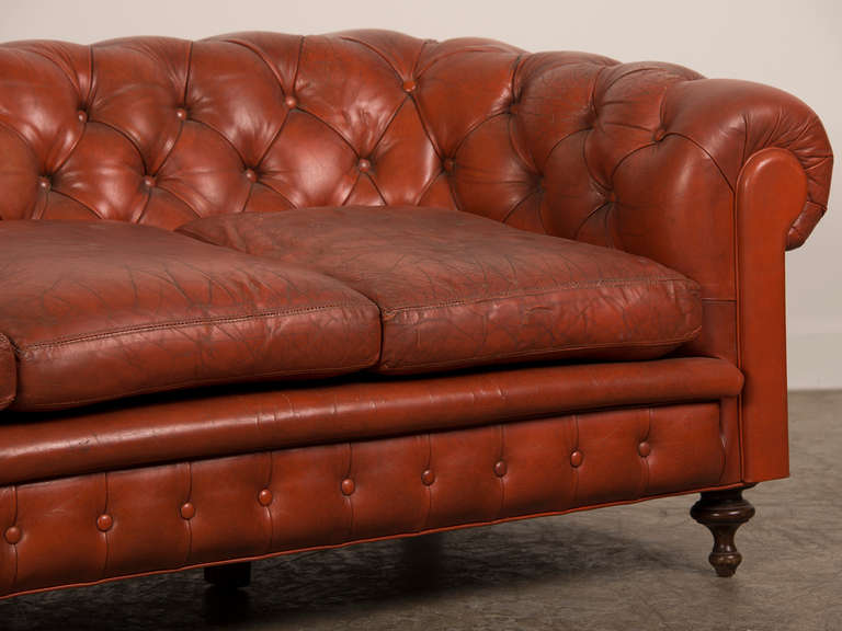 Edwardian Period Chesterfield Leather Sofa, Original Feet, England, Circa 1910 at 1stdibs