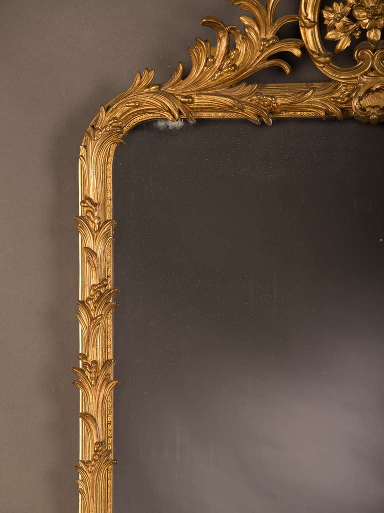 Belle Epoque Period Gold Leaf Mirror Frame With A Palm