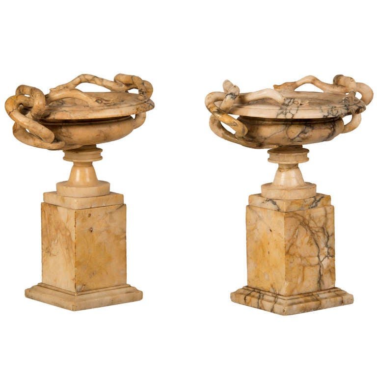 "Pair of Antique Italian ""Grand Tour"" Marble Tazzas Featuring Serpents circa 1860"