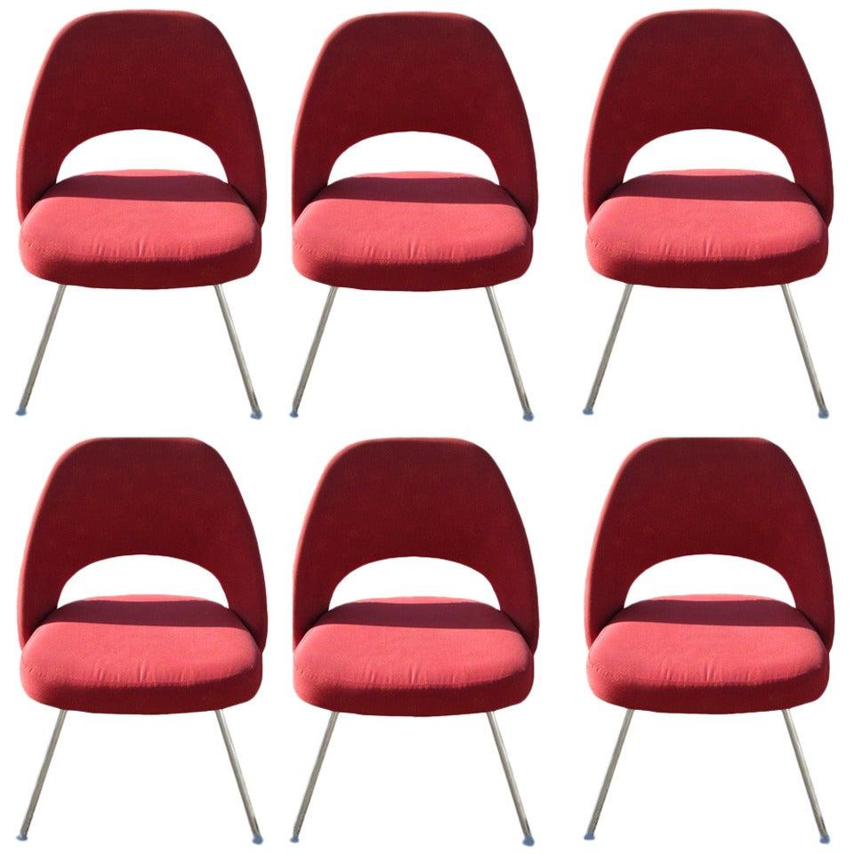 (6) Contemporary Knoll Eero Saarinen 72C-PC Dining Side Chairs