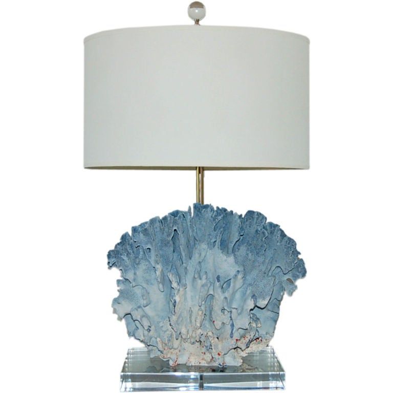 Velvety Egyptian Blue Suede Coral Lamp At 1stdibs