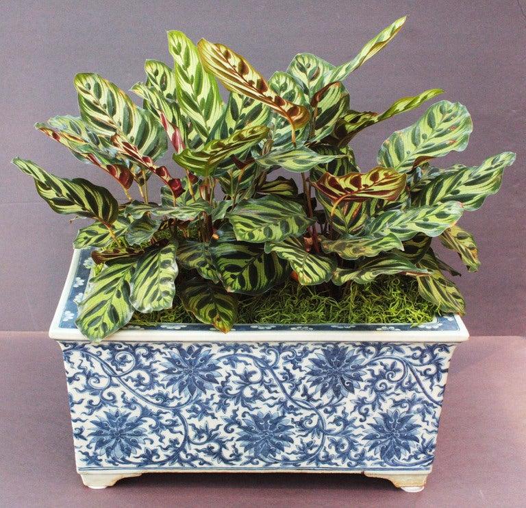 Chinese Porcelain Planter At 1stdibs