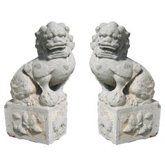 A Pair of large 19th Century stone Foo Lions from Southern China