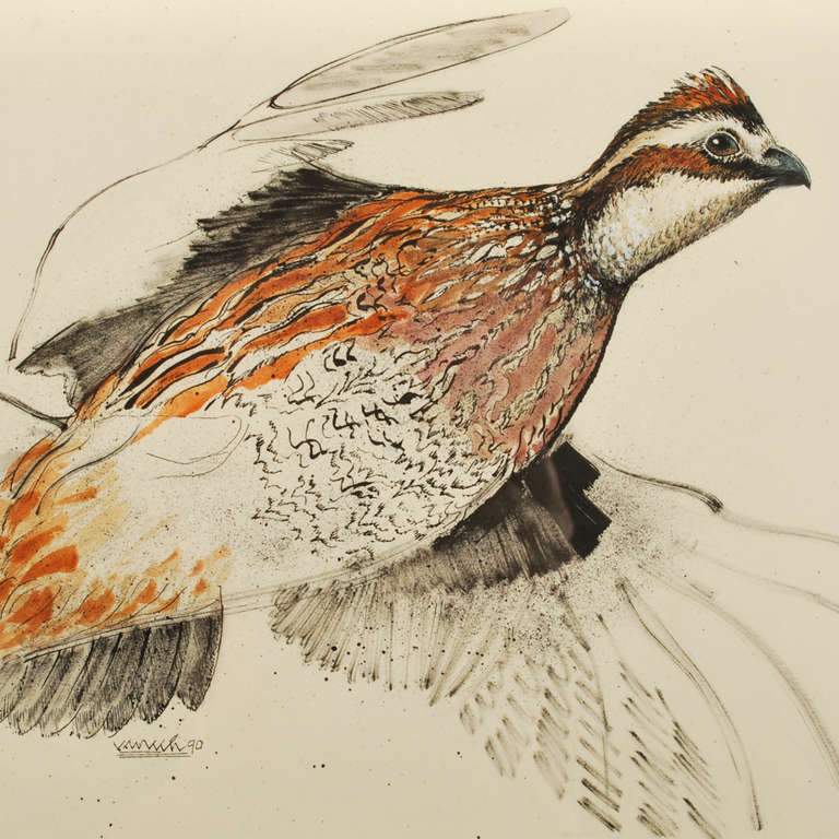 Quail in Flight Signed...