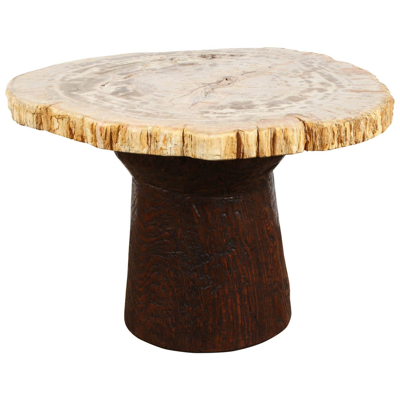 Petrified Wood and Teak Side Table