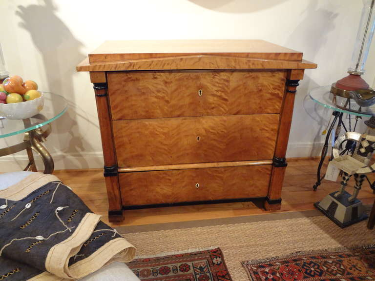 Early 19th Century Austrian Biedermeier Commode or Chest For Sale 4