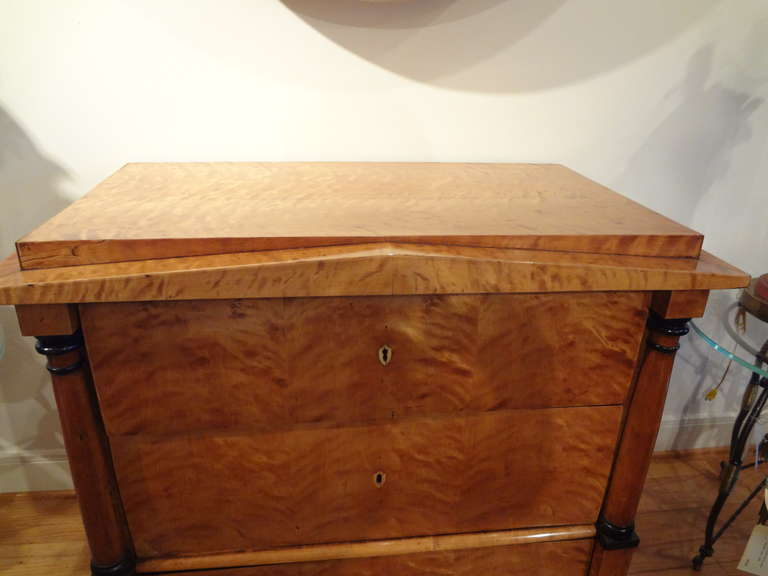 Early 19th Century Austrian Biedermeier Commode or Chest For Sale 5