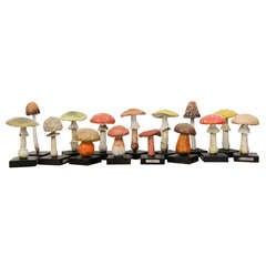 Painted Wood/Ceramic Wild Mushrooms priced individually