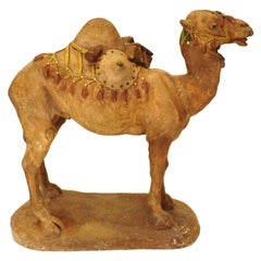 Painted Camel