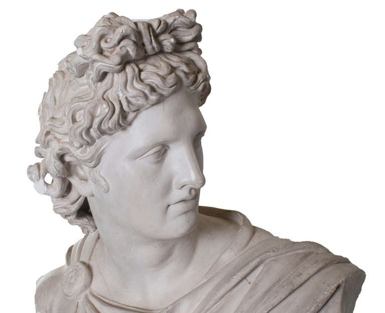 French Plaster Head of Apollo For Sale